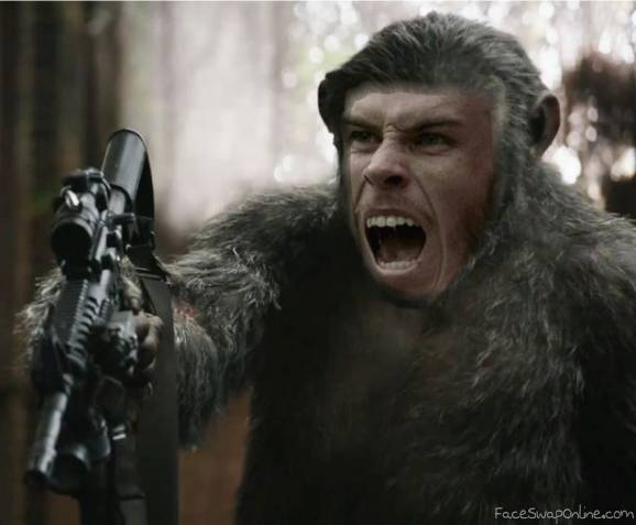Bale of the Apes