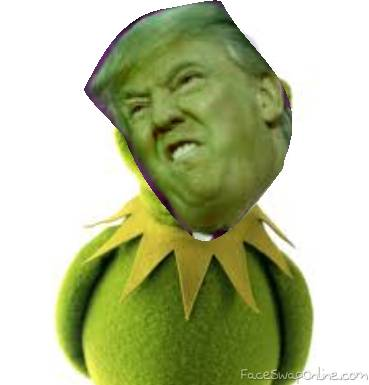 Donald the Frog