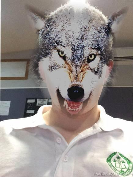 Wolfthony