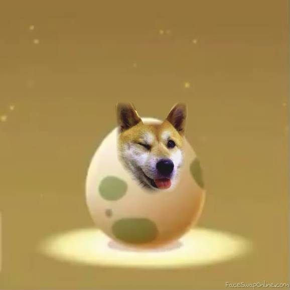 Doggegg