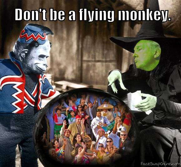 No Flying Monkeys
