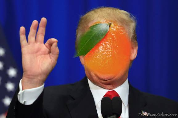 VOTE ORANGE PEAL