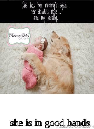 The doggy sense