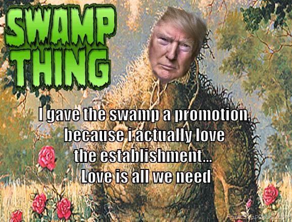swamp drain??