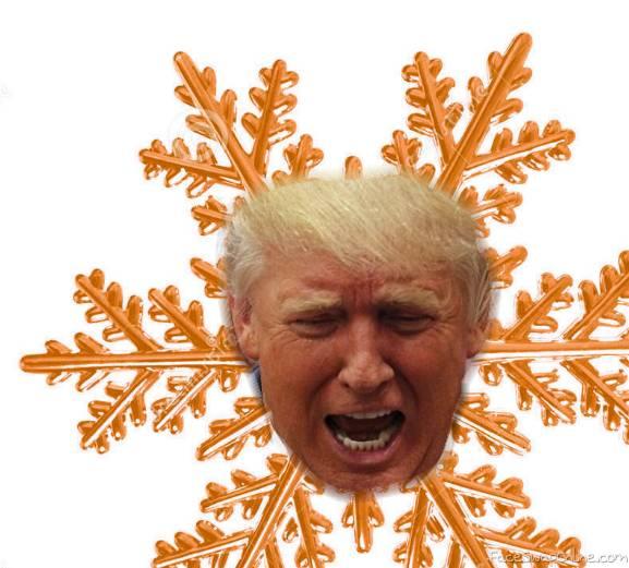 President Snowflake | Face Swap Online