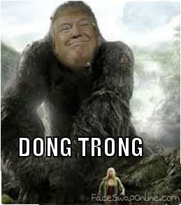 DONG TRONG