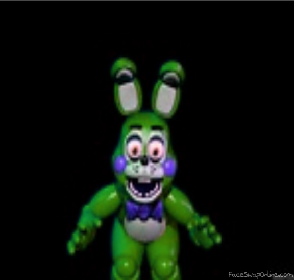 toy springbonnie