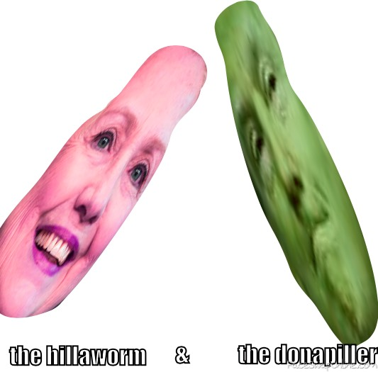 the hillaworm and the donapiller