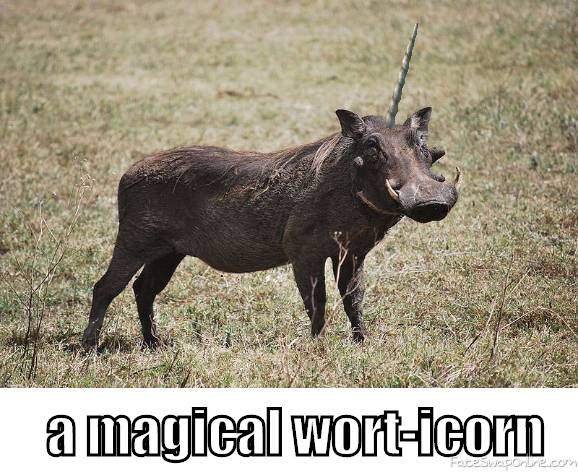 A magical wort-icorn