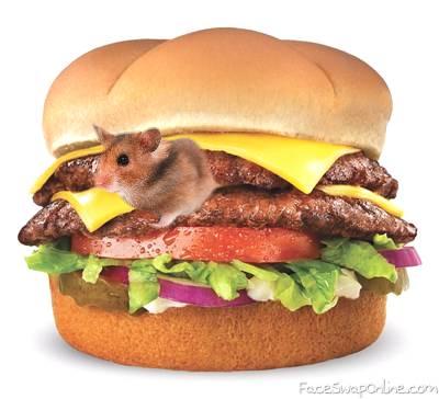 A hamster Burger!