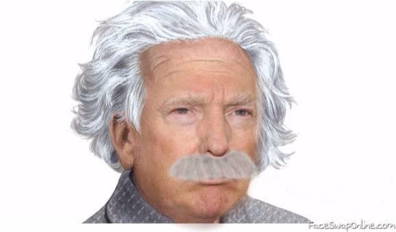 Donald Einstein