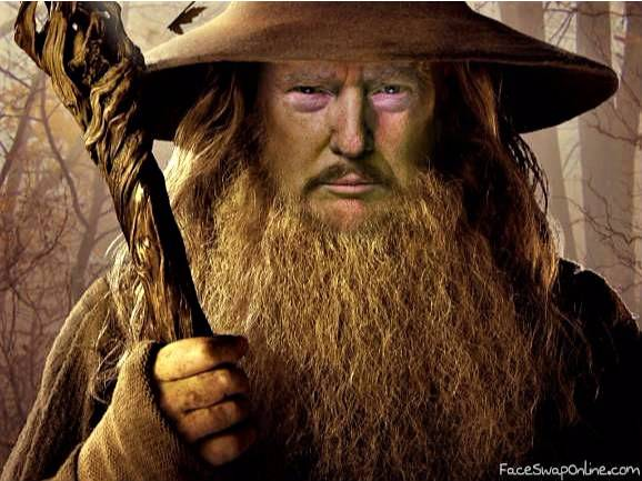 Donald Gandalf
