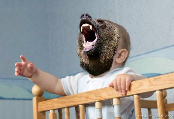 The Bear Baby