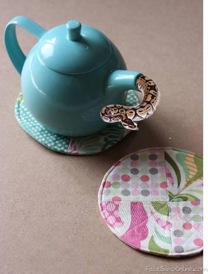 The teapot snake