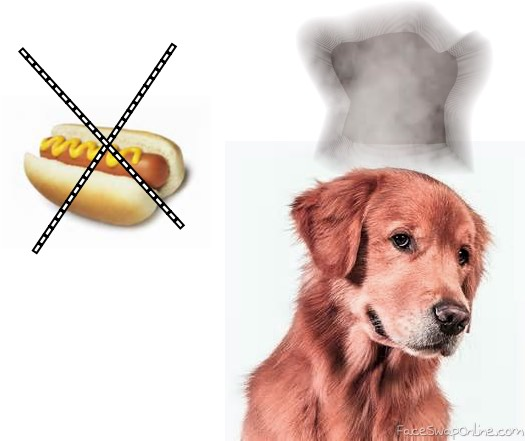 the real hot DOG
