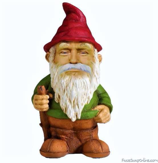 Gnome Trump