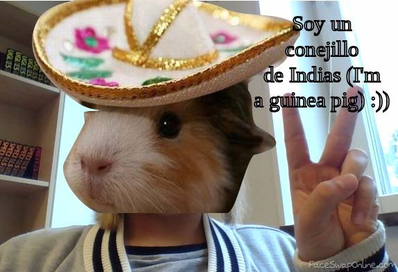 Mexican guinea pig girl