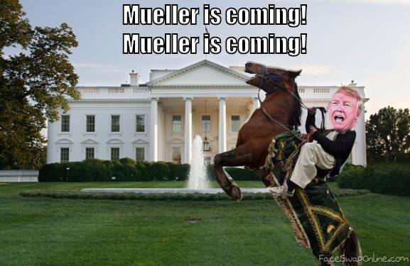 Mueller is coming!