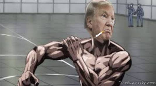 One Punch Trump