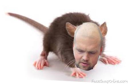 rat boy hall