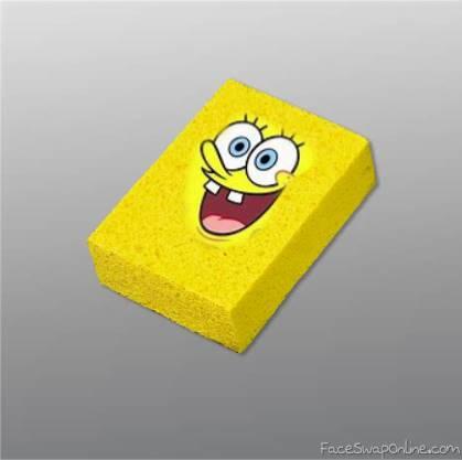 The REAL SpongeBob