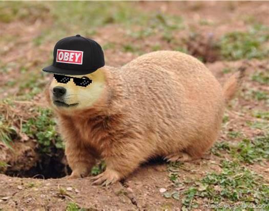 fresh prairie doge