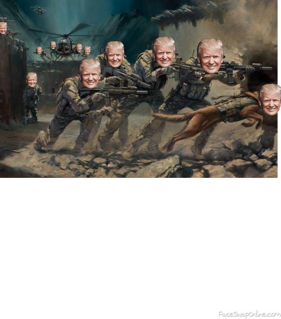 trump military force