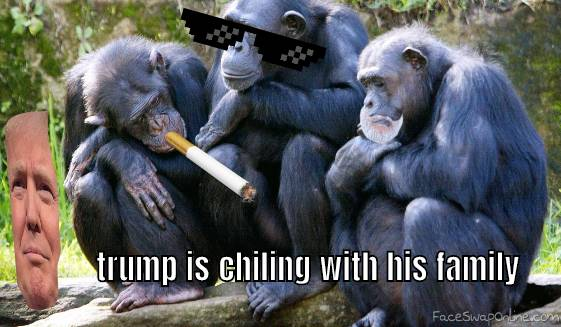 trump's family