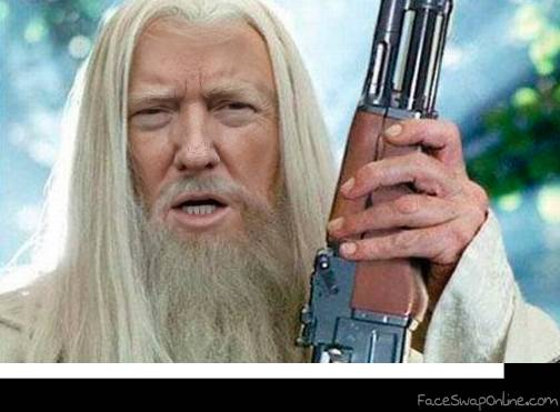 Gandalf Trump supports NRA