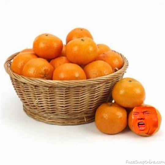 nothing out of the orangenary