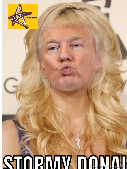 STORMY DONALD