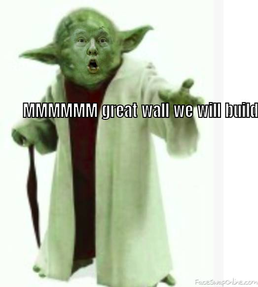 Great wall we will build