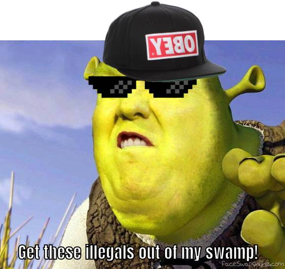 Get These illegals out my swamp