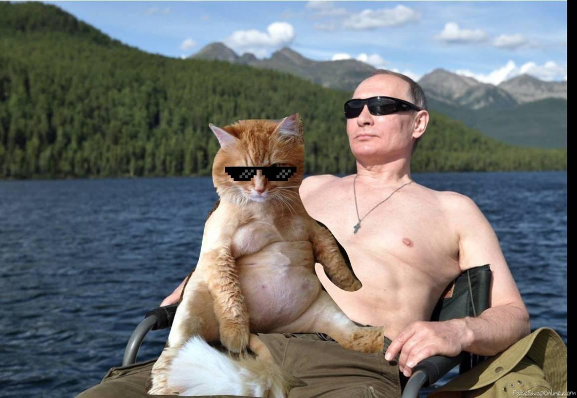 Putin's Cat