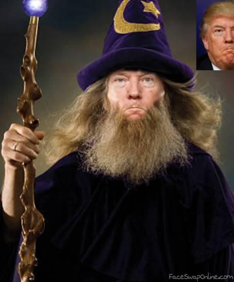 Wizard Trump