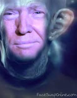 Mega Trump