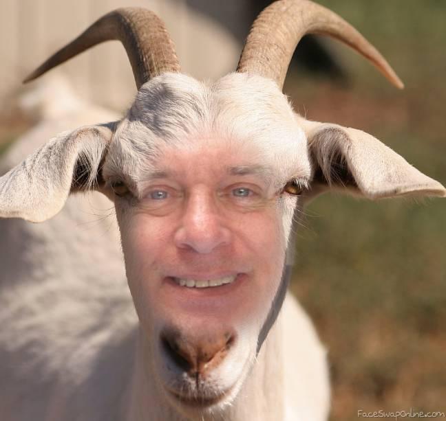 da goat