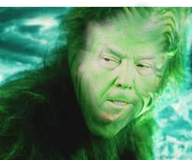 Grinch President