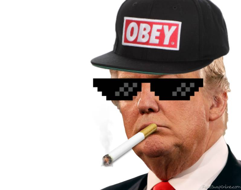 mc pato donald trump mlg