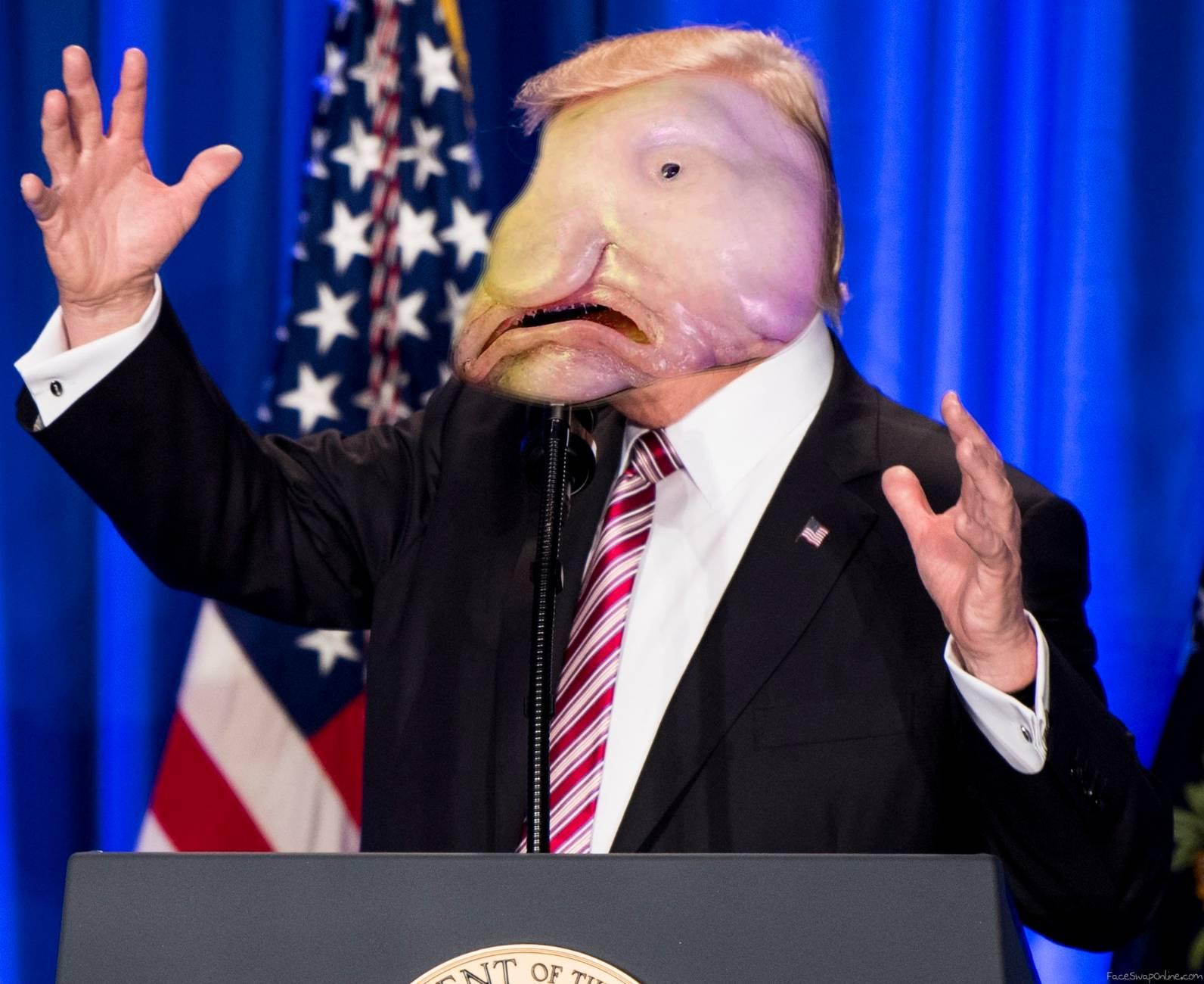 Blobfish Trump (no offence)