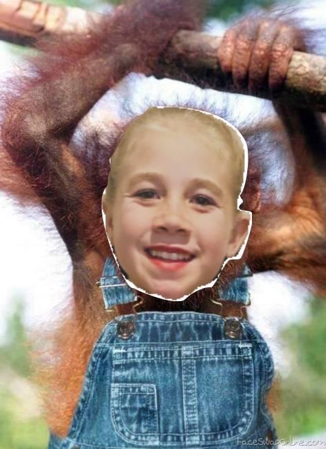 Chelsea Monkey