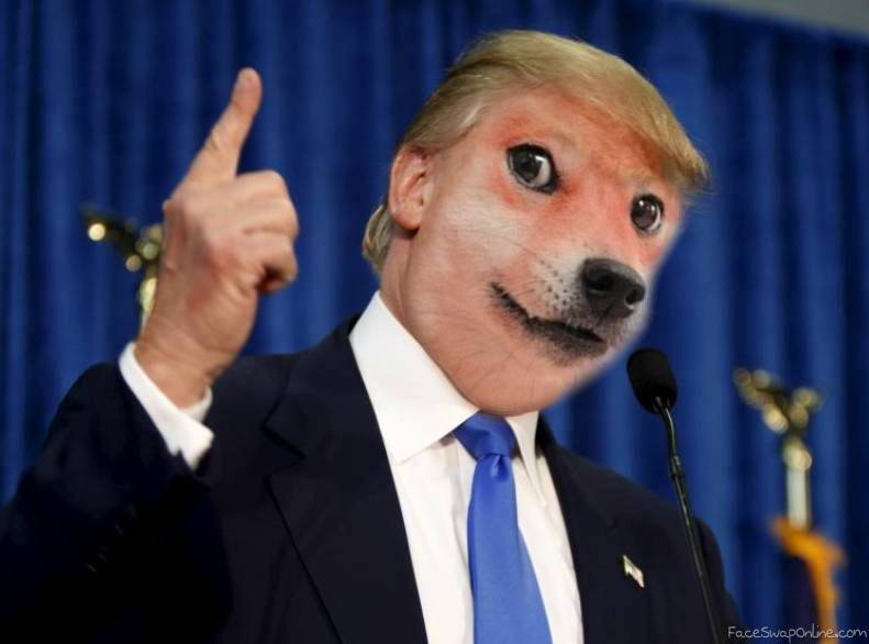 Donald Doge