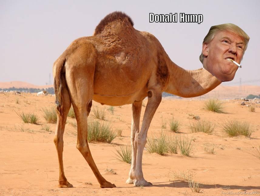 Donald Hump
