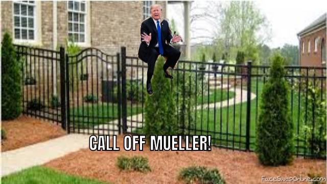 POTUS AND HIS FENCE