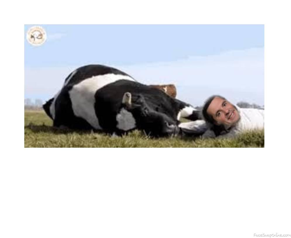 Devin Nunes cow loven