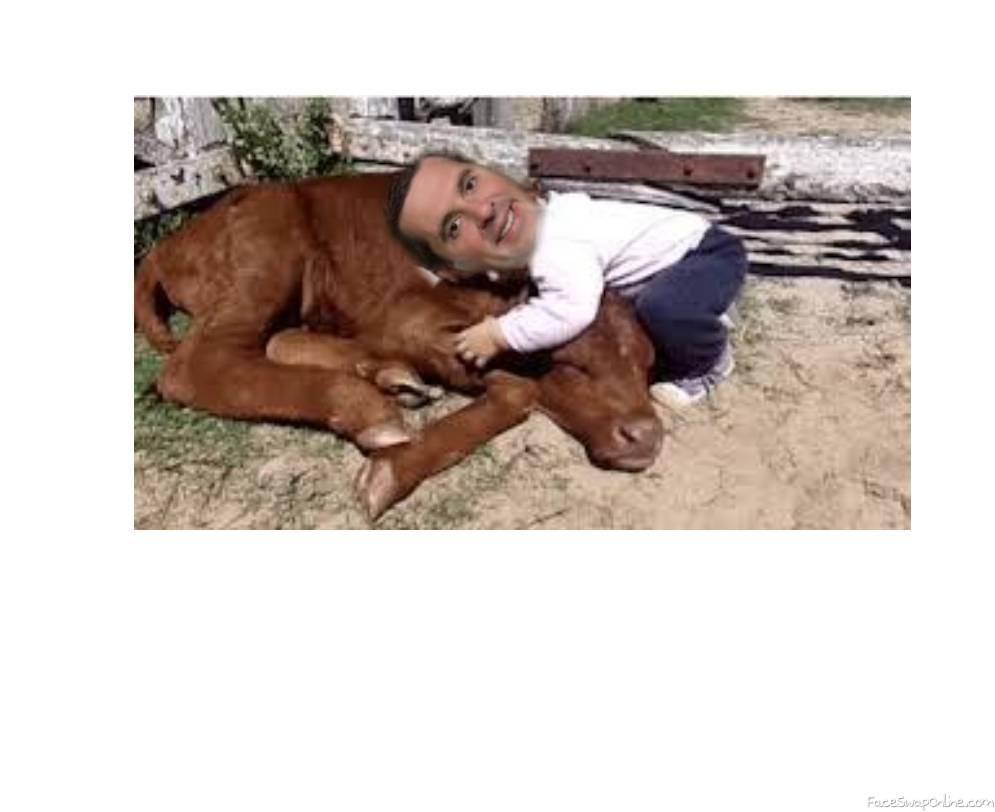 Devin Nunes love cows