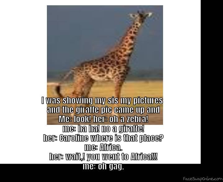 giraffe/zebra #halariosemoment