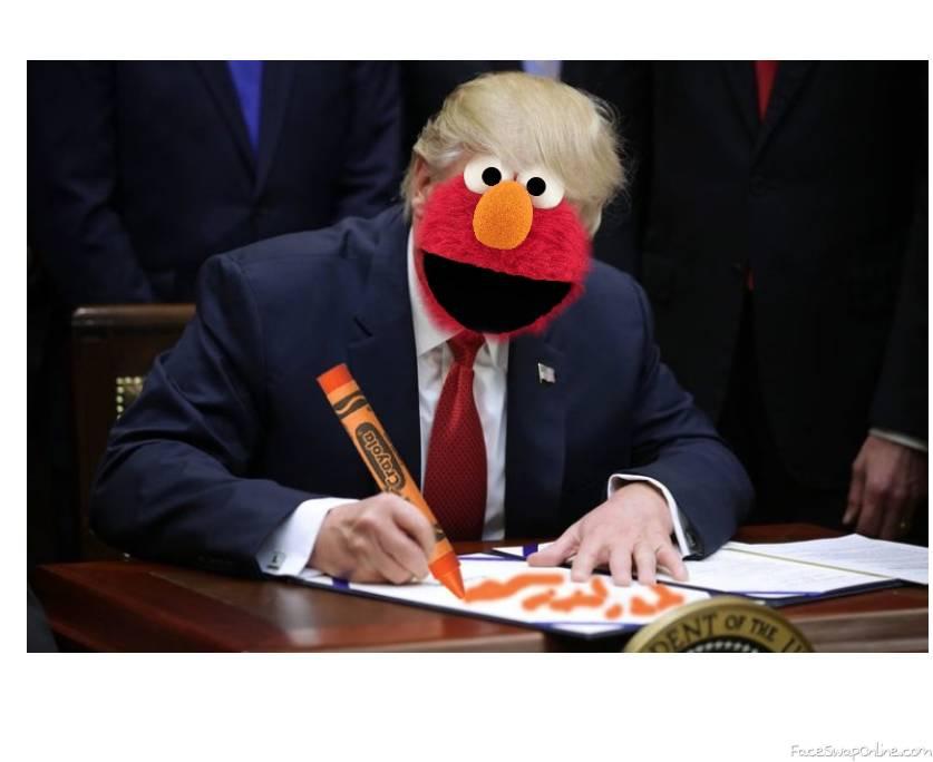 Donald World