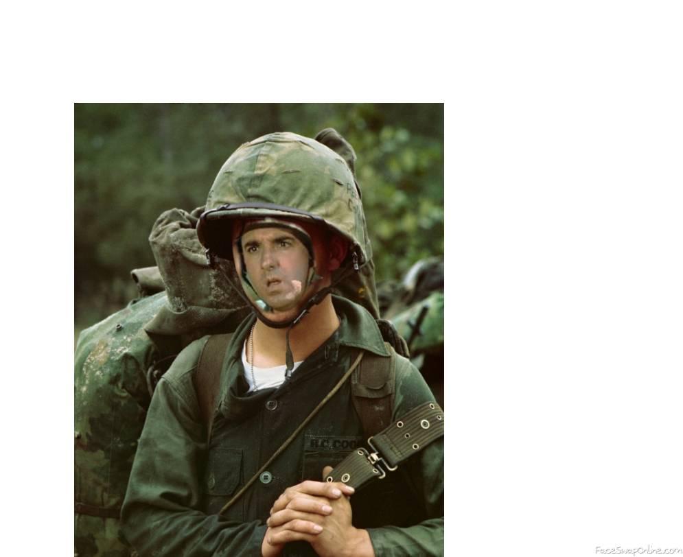 Gomer Pyle In Vietnam