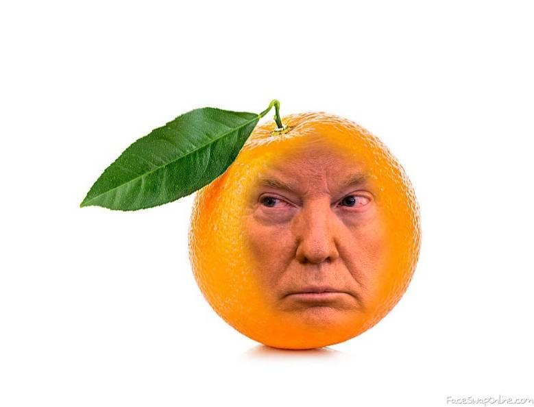 Le Doringe Trump